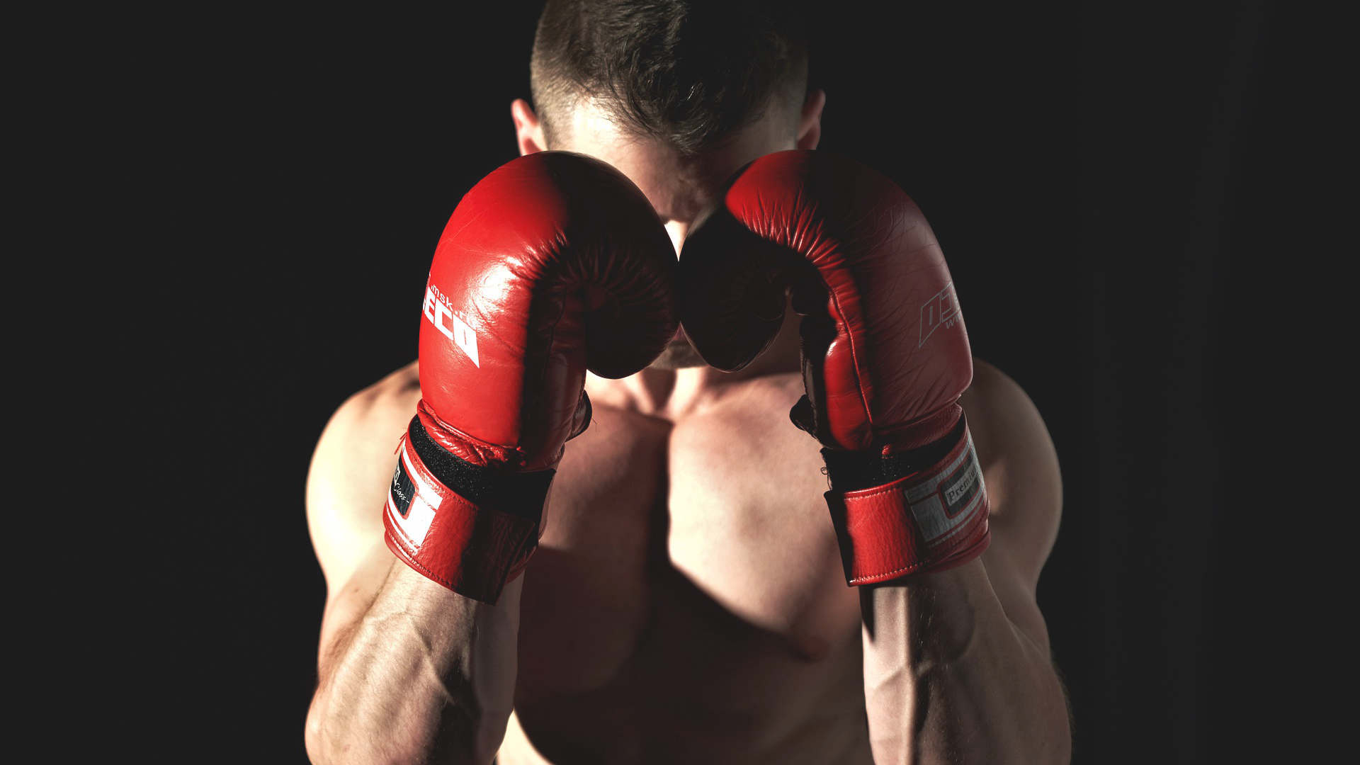 Boxen-lernen-zu-hause-boxing-arts.com